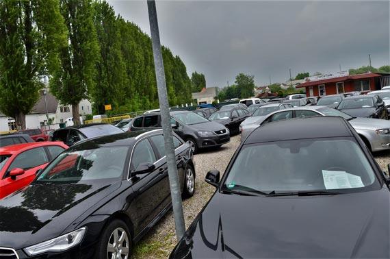 Firmengelände FairCarTrade mit vielen Autos